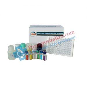 Jual Reagen Elisa BIOS